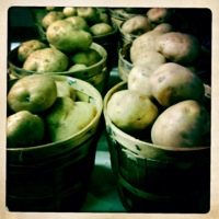 Potatoes_Directory